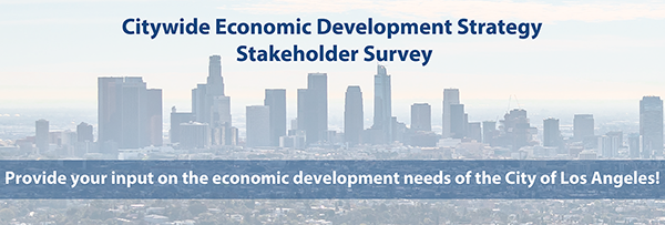 Citywide Economic Development Strategy Survey