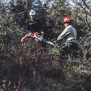 Christopher (left) operating a chainsaw on his Creek wildfire clean-up crew