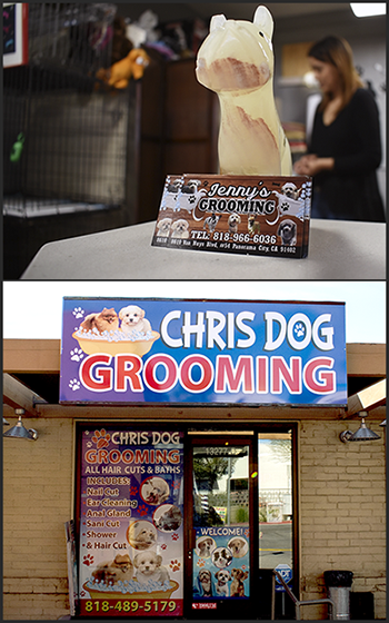 exterior of Chris Dog Grooming and close up of Jenny's Dog Grooming business cards with marble dog sculpture